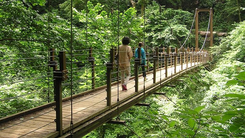 高尾山の吊り橋 | ☆登山サークル...
